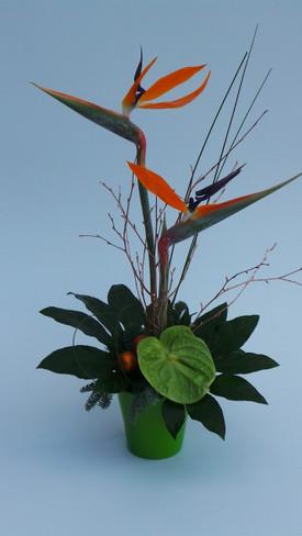 7.Festive  Tropical Treat
