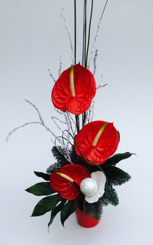 Our very popular anthurium design has been given a festive twist!