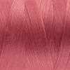 Designer WonderFil Thread: Pink Tiger