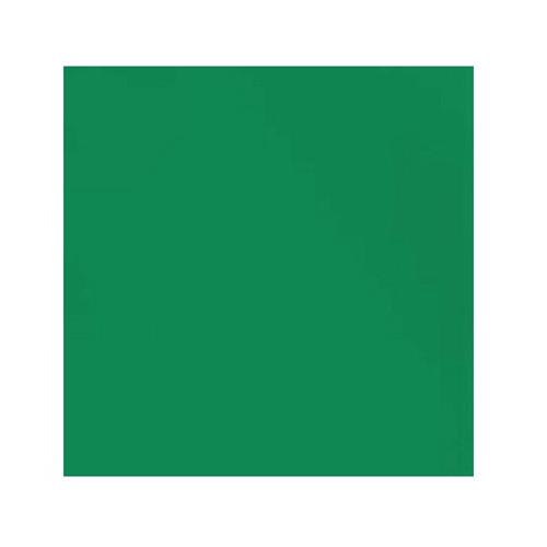ORGANIC!  Leaf Green:  Ribbing, GOTS