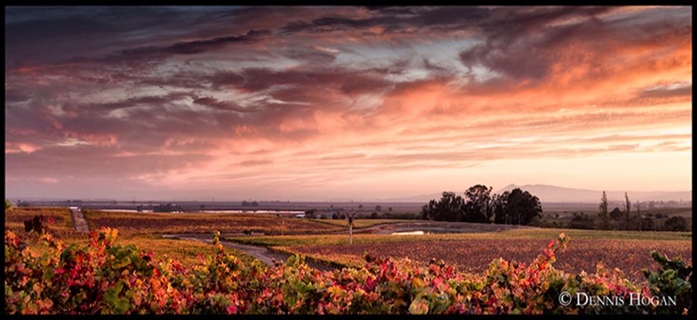 sunset-mod-980x450.jpg