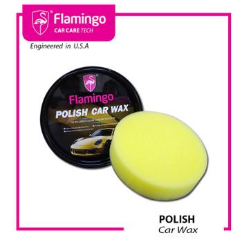 F041 POLISH CAR WAX