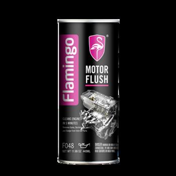 F048 5-MIN MOTOR FLUSH