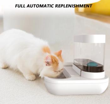 Cat feeder plastic