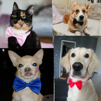 Dog clothes polyester cotton