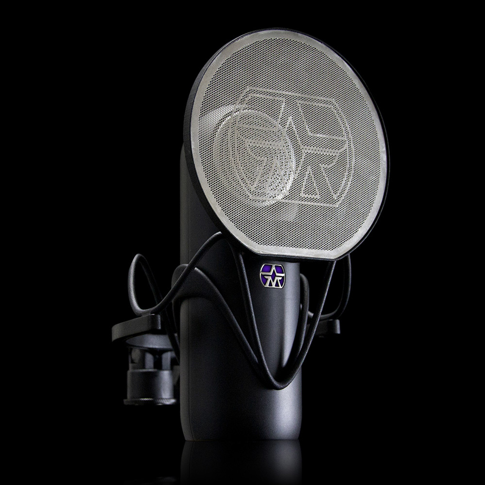 ASTON ELEMENT MIC W/ CRADLE & MAGNETIC POP FILTER