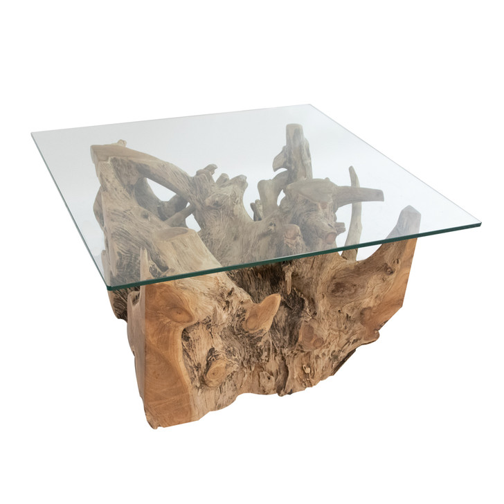 right facing view of teak wood root table with glass top