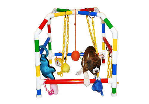 Play House - Small 22""