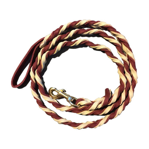Custom Braided Leather Leash