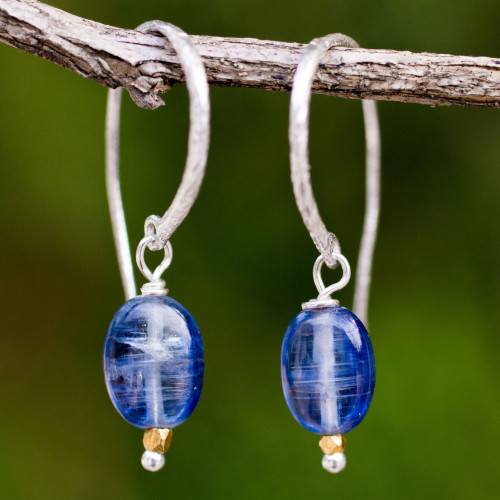 Kyanite on Sterling Silver Hook Earrings with 24k Gold Beads 'Accents'