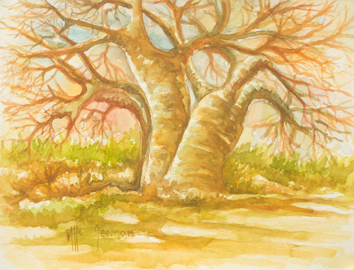Original Signed Watercolor African Landscape Painting 'The Baobab Tree I'