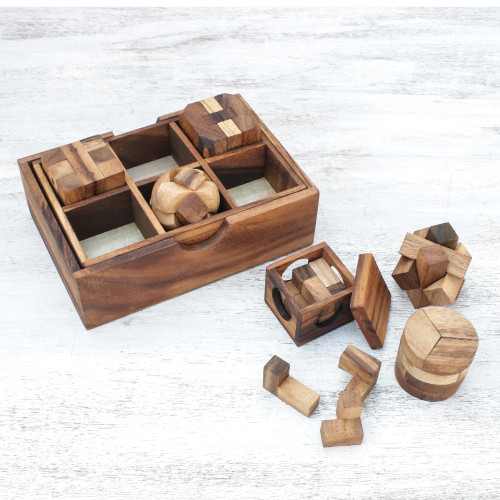 Raintree Wood Puzzle Set from Thailand 6 Piece 'Beautiful Challenge'