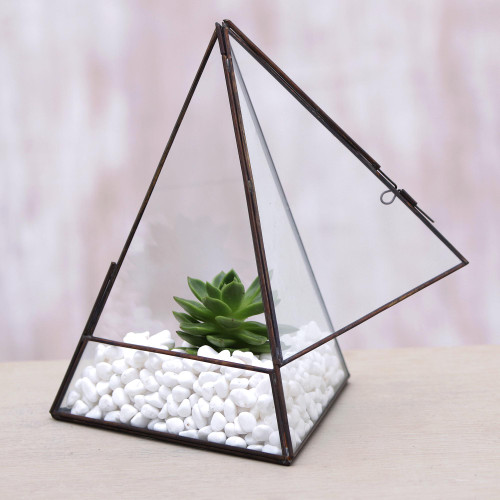 Handmade Javanese Glass and Brass Pyramid Plant Terrarium 'Pyramid Patio'