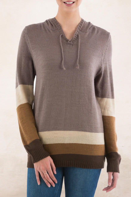 Brown Striped Hoodie Sweater from Peru 'Brown Imagination'