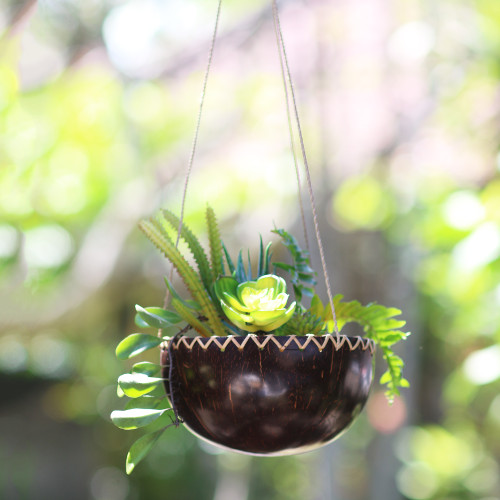 Hanging Coconut Shell Plant Pot 'Clean Environment'
