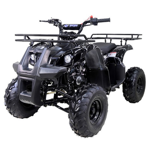 Taotao ATA 125D ATV 125CC, Air Cooled, 4-Stroke, 1-Cylinder, Automatic,- Fully Assembled and Tested