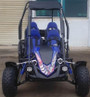 TrailMaster Blazer 4 150CC Family Size 4-Seater, 4-Stroke, Single Cylinder, Air Cooled Go Kart