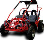 Trail Master 200cc Gokart Type MID XRX-R  (California Legal)