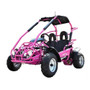 HIGH QUALITY GO KART 200CC W/ PULL START & ELECTRIC START