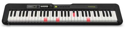 CASIO Electronic Keyboard (LK-S250)