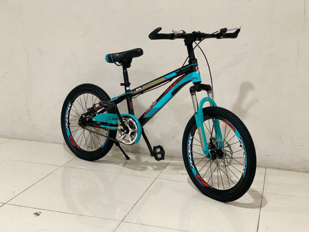 """20"""" Bicycle (AHDS-20)"""