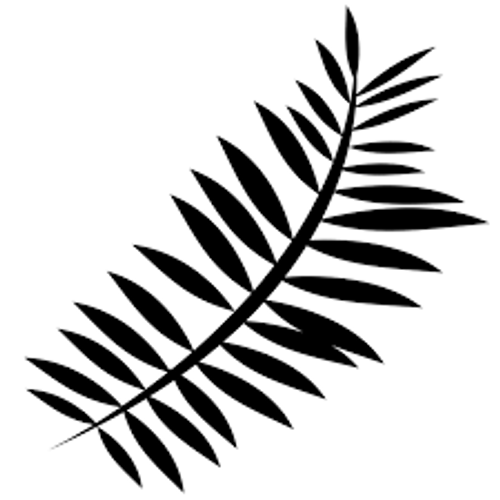 Reusable Stencils, Tropical Palm Tree Fronds, Palm Leaves