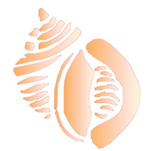 Reusable Stencils, Colorful Sea Shell in Peach