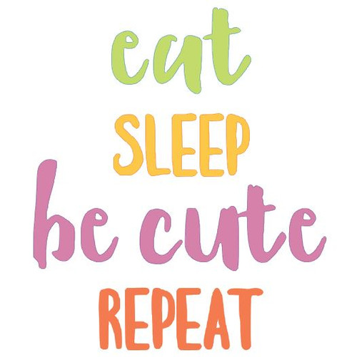 "Reusable Stencils: ""Eat, Sleep, Be Cute, Repeat"", new baby nursery sign decor."