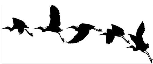 Reusable Stencils, Egrets