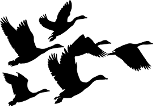 Reusable Stencils, Goose, Geese, Large Birds