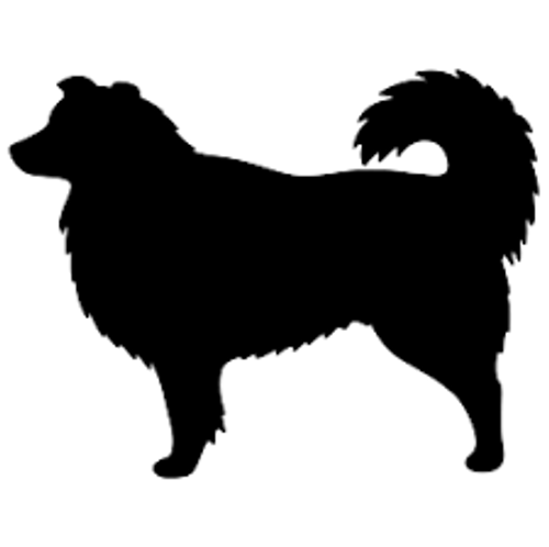 Reusable Stencils, Collies, Dogs