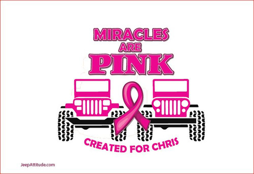 Miracles Are Pink Flag