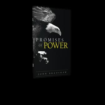Promises of Power (eBook)