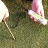 Field Scout EC Soil Meter with case