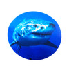 Sticker of Bull Shark