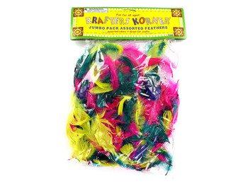 Colorful Craft Feathers (pack of 24)