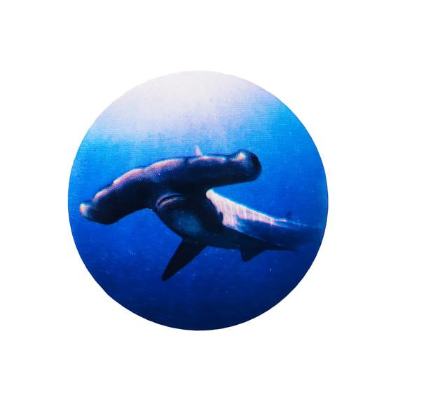 Sticker of Hammerhead Shark