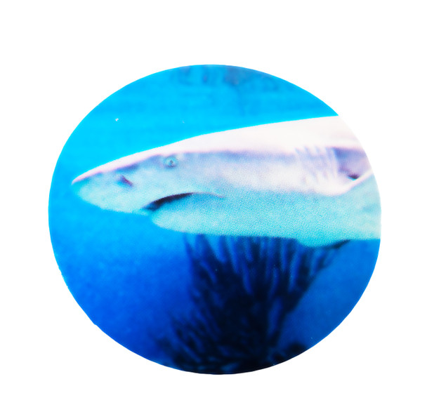 Realistic Shark Stickers (Roll of 100)