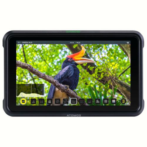 """Atomos Shinobi HDR Photo & Video Monitor, 5"""""""