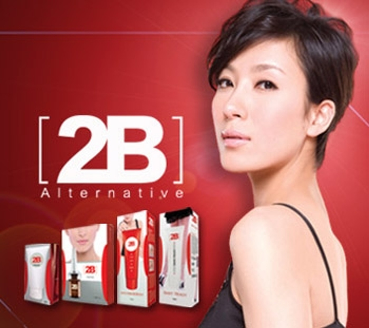 2B Alternative