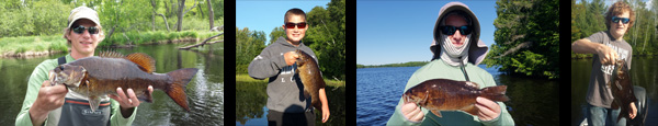smallmouthbassbanner.jpg
