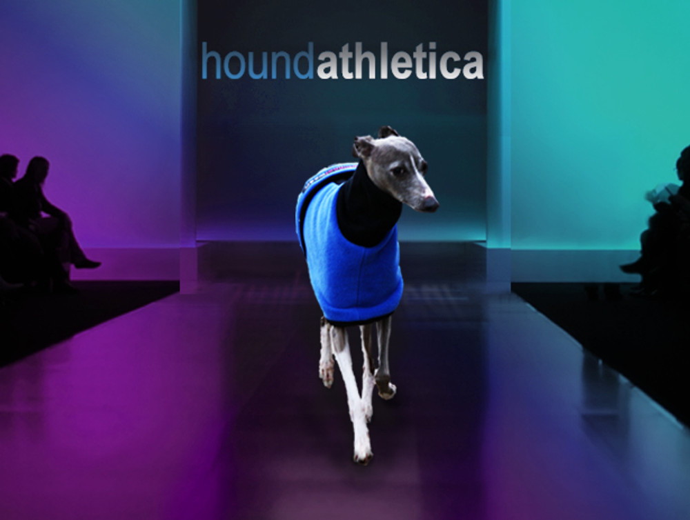 italian greyhound fleece coat