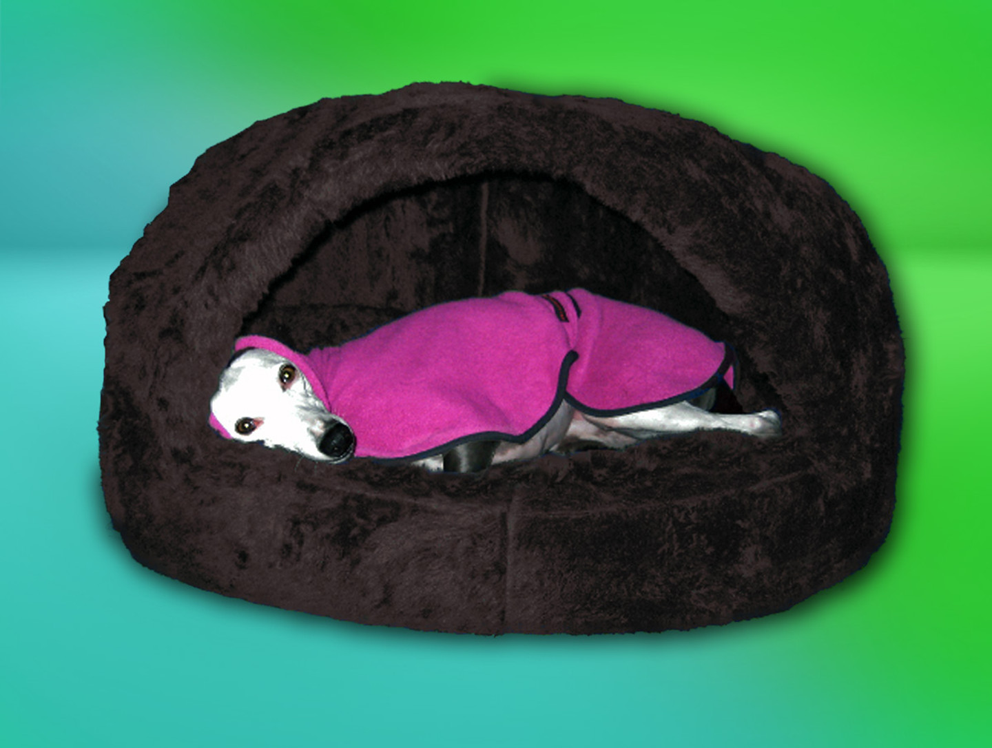 Den Luxury Whippet Bed