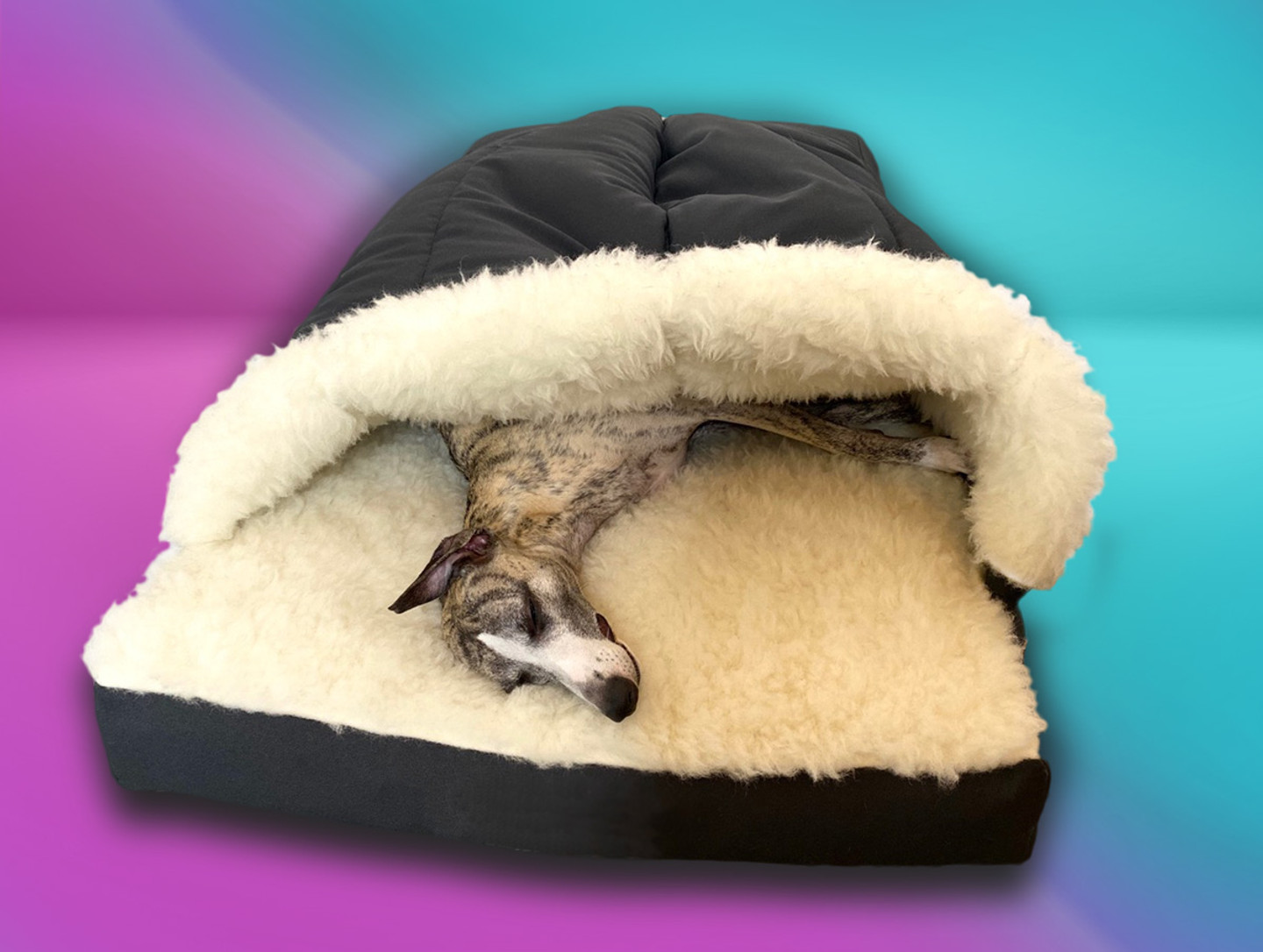 dreamtime cocoon whippet bed