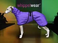 Splash Winter Whippet Coat