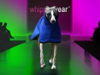 Splash Waterproof Whippet Coat