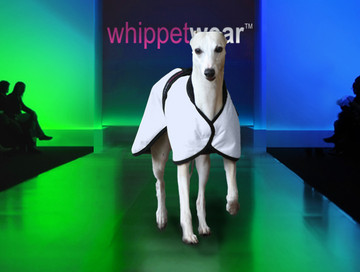 Go Go Whippet Walking Coat