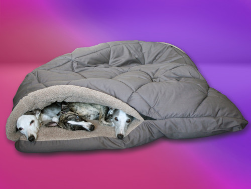 Family Kanga Pouch Whippet Bed