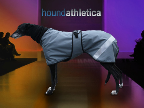 greyhound waterproof coat