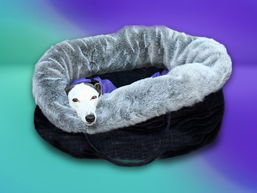 Luxury whippet cafe bed